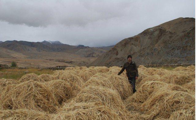 राहुल खेत मे पोज़ देते हुए।