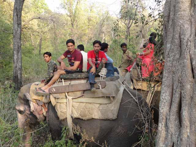 हाथी पर मनोज व् योगेश
