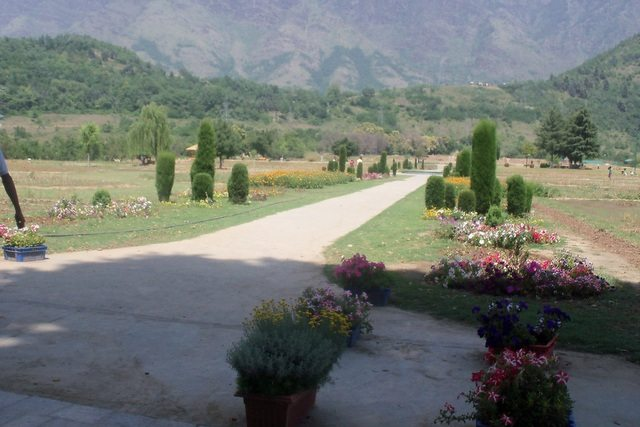 Another view of Nishat Bagh
