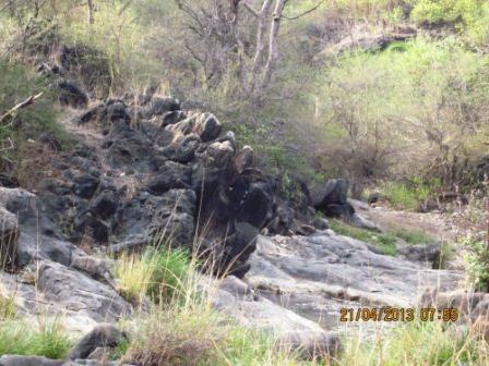Reserve terrain