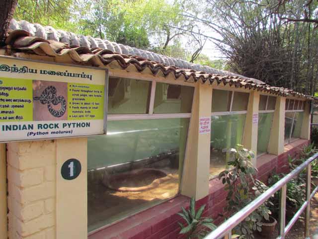 Snake shelters inside park