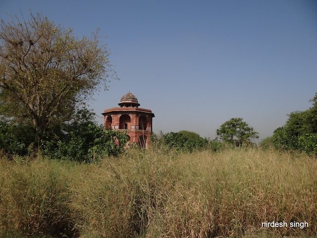 Purana Qila - Excavated Mound - Present View