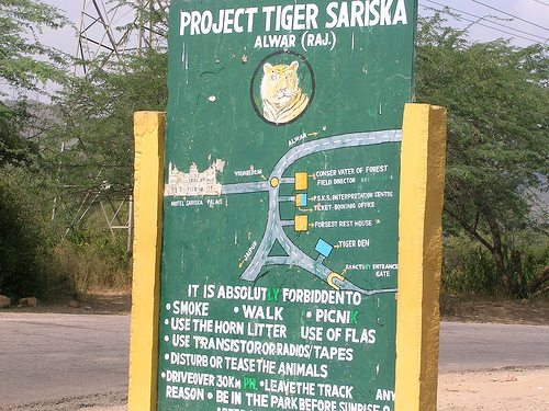 Entry to sariska tiger reserve