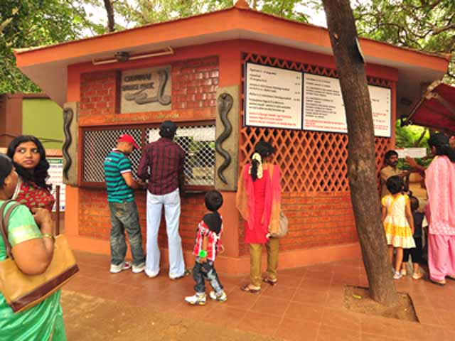 Chennai Snake park ticket window