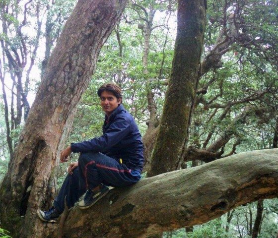 Junglee in Jungle on the way to Prashar Lake