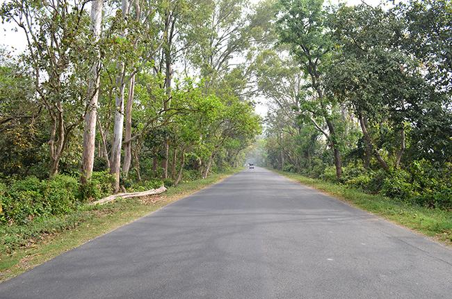 Rudrapur - Haldwani Road