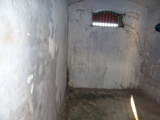 One of the many cells
