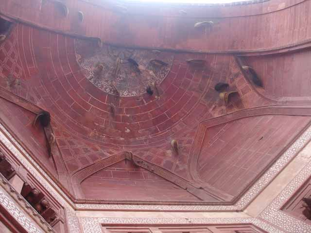 Darwaza Guarded by Honey Bees :-)