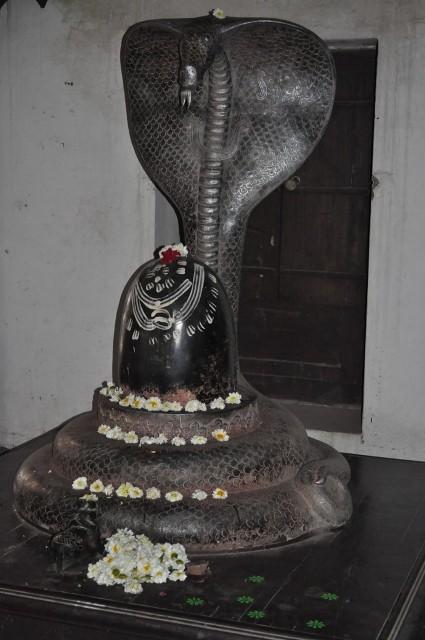 Rajwada156