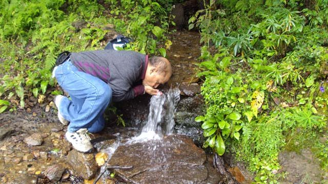 Fresh Spring Water