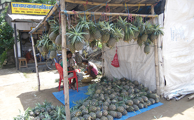Stall - selling pineapples