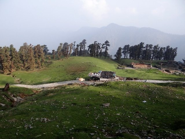 Chopta area - Switzerland of the East!! 2