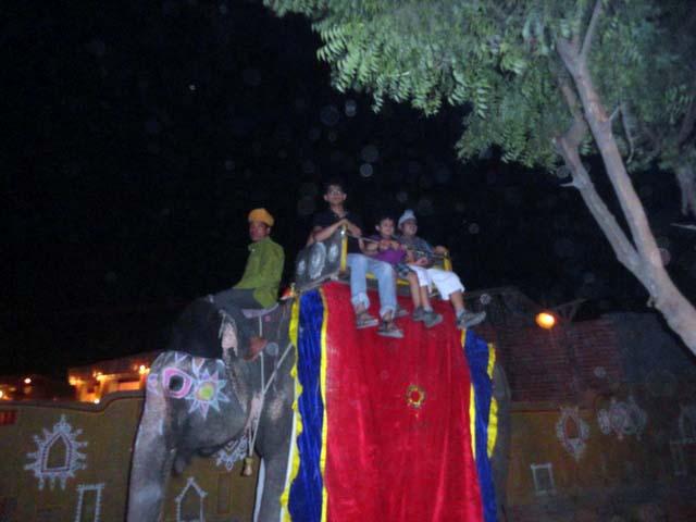 हाथी की सवारी तुषार, रावी और पारस
