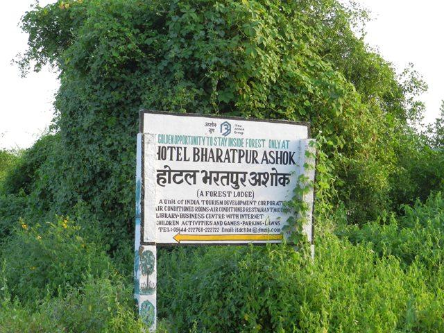 Bharatpur Ashok Board