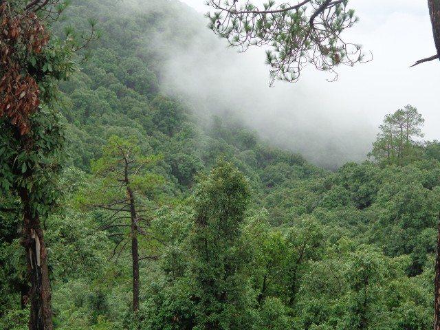 पहाड़ो की सुंदरता मानसून मे