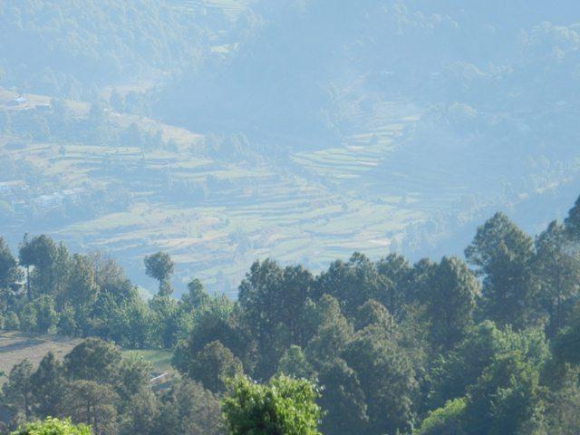 View at Kausani