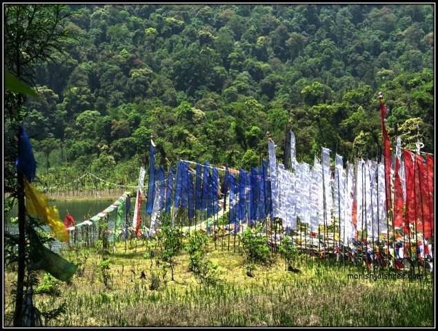 Prayer flags at Khecheopalri Lake