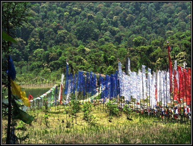 Prayer flags at Khecheopalri Lake