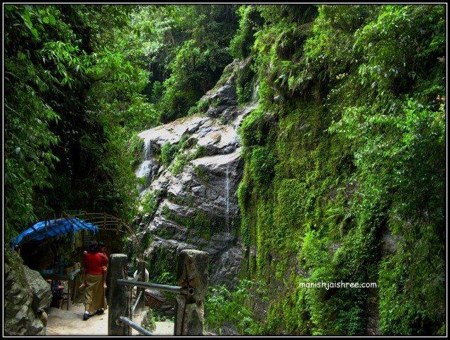 Wilderness at Kanchendjonga Falls