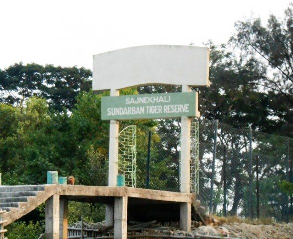 The second stop at Sajnekhali