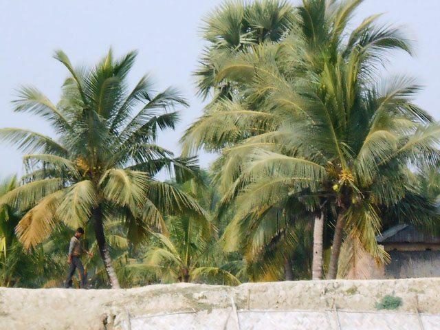 Adjoining villages