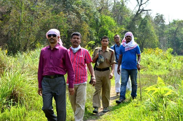 Jungle Trail at Nameri