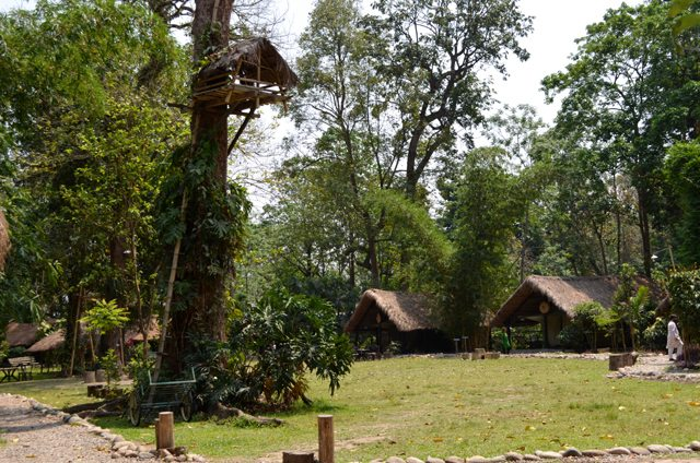 Inside the Eco Camp