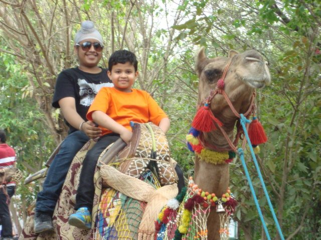 Camel ride is always a big hit among the children