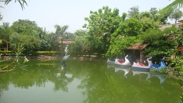 Pond at Haldi Ghatti Museum