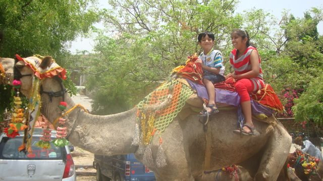 Kids enjoying ride on the King of Desert outside Haldi Ghatti Museum
