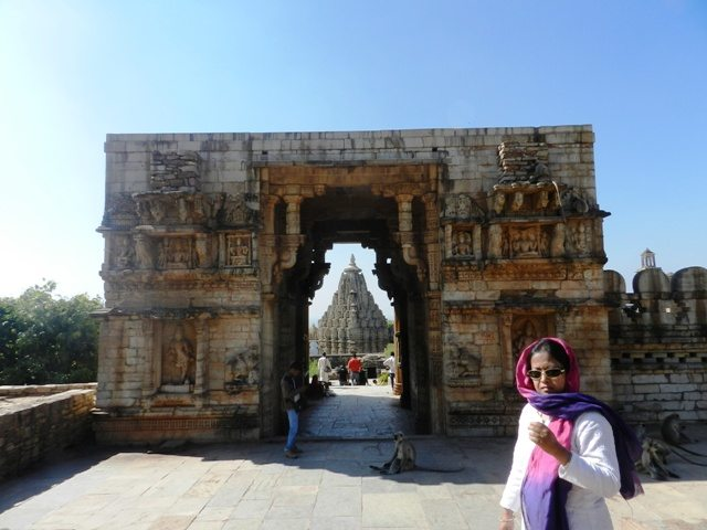 Glimpse of Samadhisvara Temple