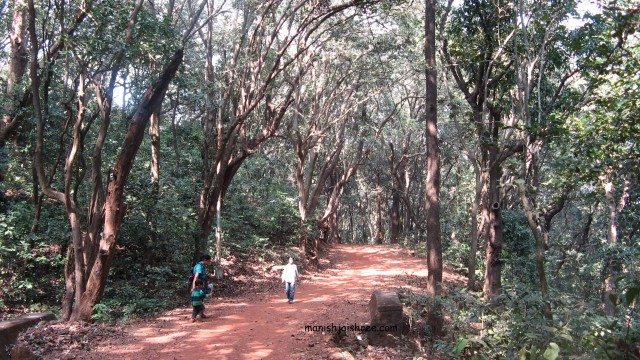 Wandering at Matheran, Maharashtra