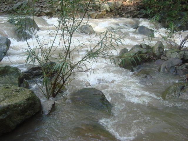 नदी का प्रवाह आज गतिमान है