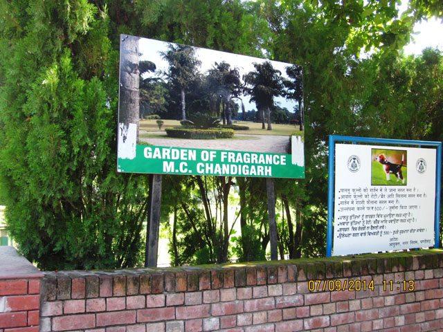Garden of Fragrance- Entry Gate