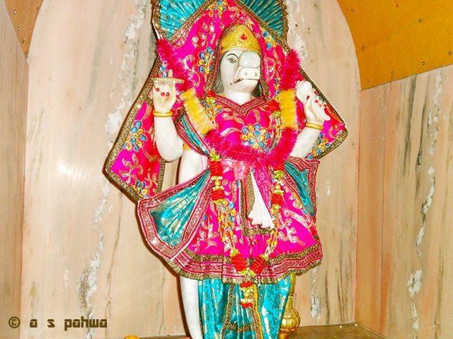 रेणुकाजी मन्दिर के भीतर वरहा भगवान् की मूर्ति