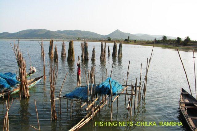 Fishing Nets at Chilka, Rambha