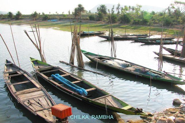 Local boats at Chilka, Rambha