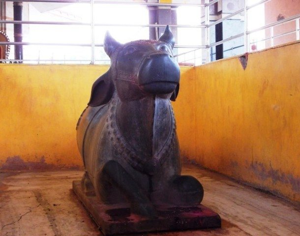 Nandi Idol in Sankalpit Smadhi Mandir