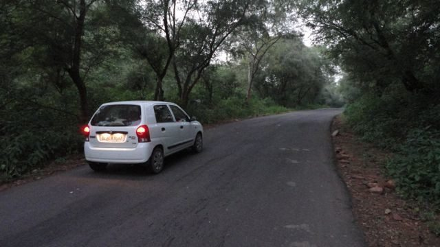 An evening on the state highway through forest