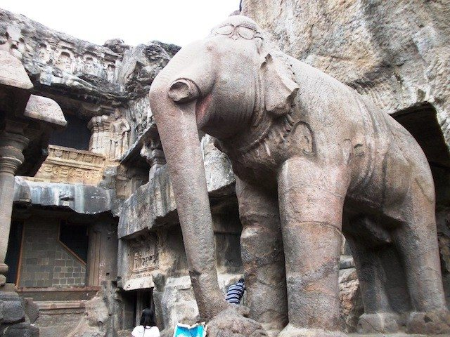 Elephant in open courtyard