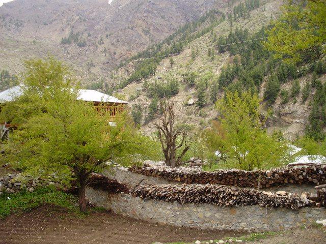 Batesari Village
