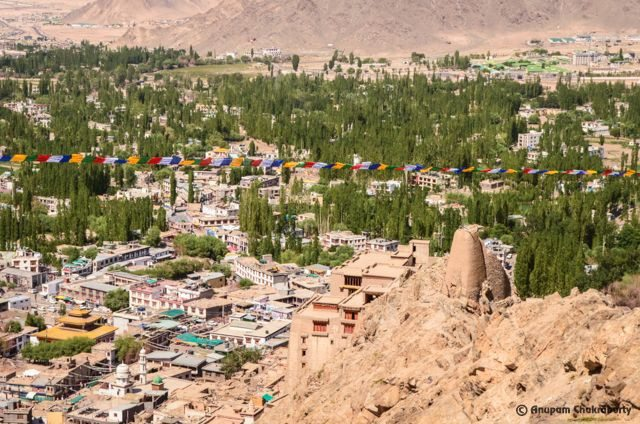 View of Leh Town from the Gompa