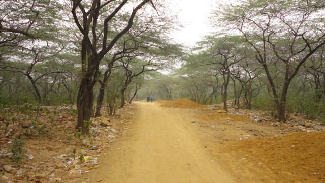 The trail towards Dargah