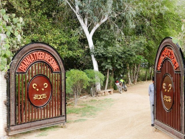 Entry to Panna Tiger Reserve
