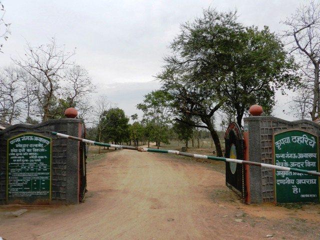Way to Gangau Sanctuary