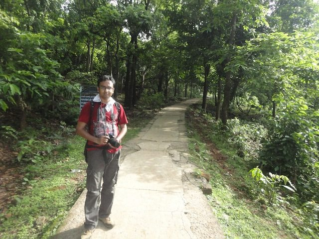 Walkway went through dense hilly forest