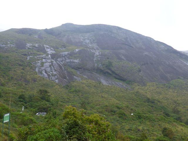 Ernakulam National Park