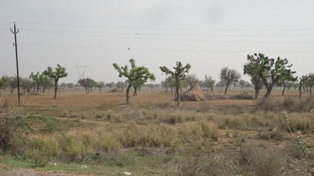 Deserted Highway amidst semi-arid terrain