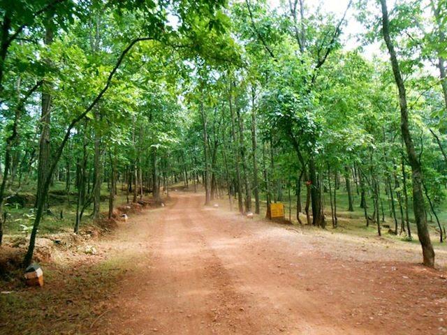 Satmalia Deer Park