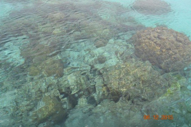 Coral reefs on the way from Thinakara to Agatti